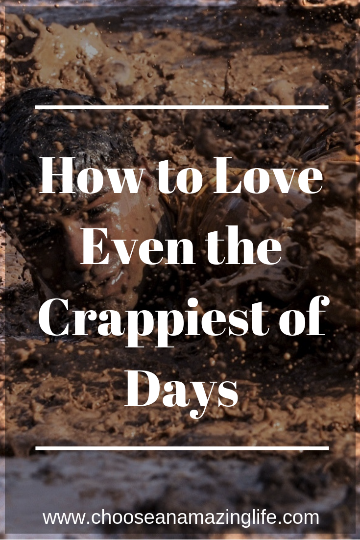 Some days are just hard and downright crappy. But that doesn't mean that we have to feel bad or that life stinks. There are ways to find joy even on the hardest, stinkiest of times! Click here to find out how!